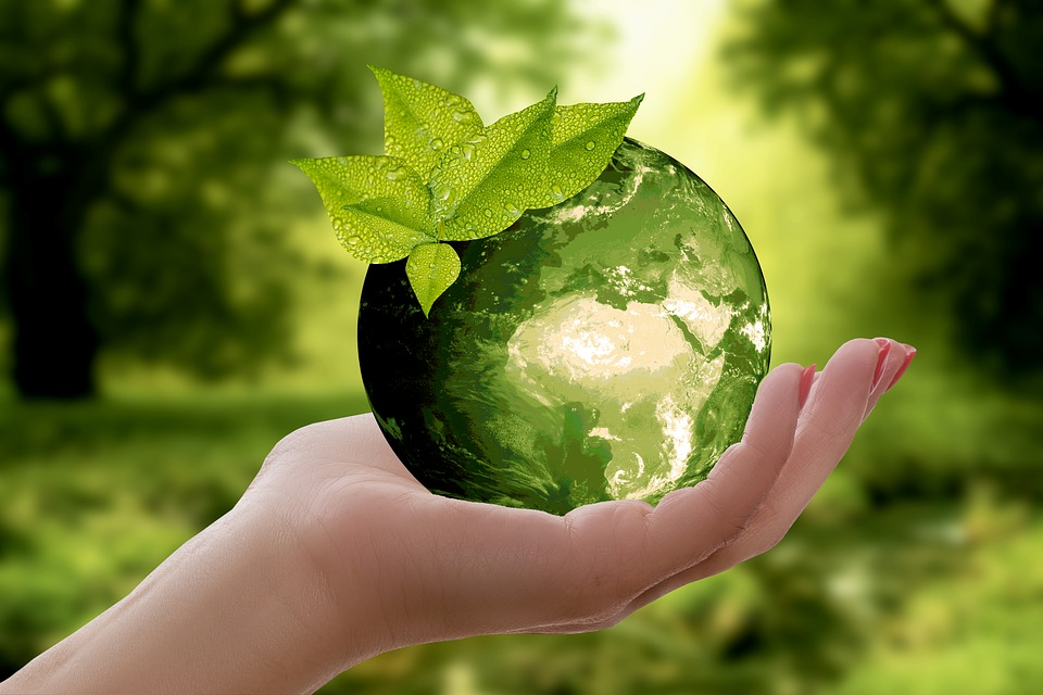Sådan kan du være med til at skabe en mere bæredygtig verden og mindske CO2 udledning