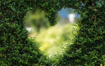 Fem tips til at få en mere bæredygtig ferie