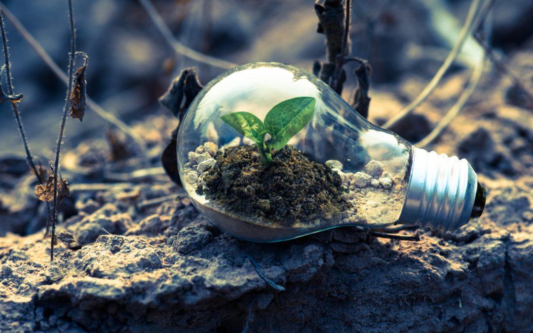 Grøn fremtid med grøn energi