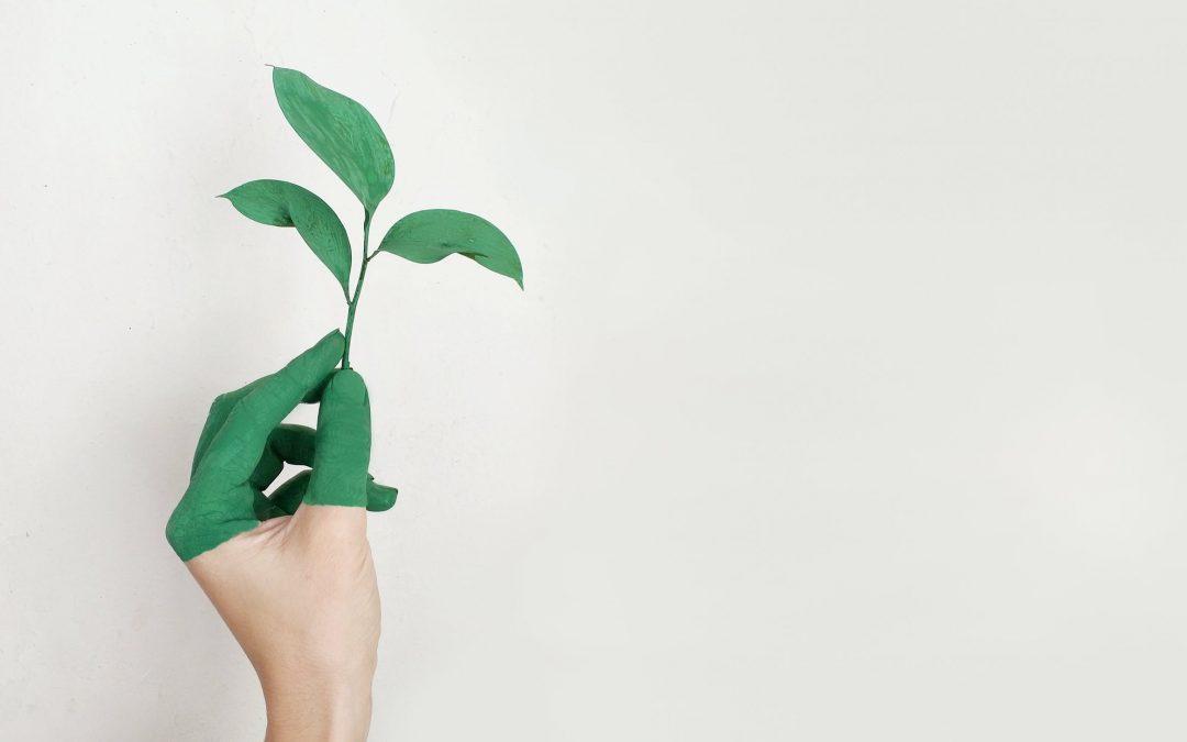 Køb mindre og oplev mere – brug pengene på en bæredygtig måde