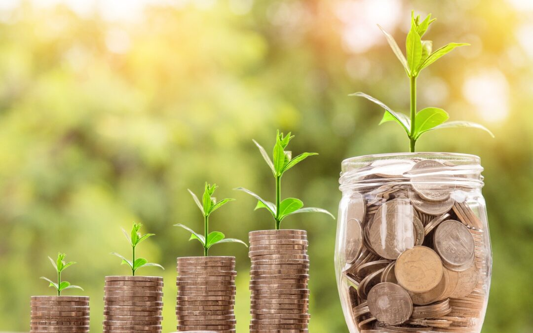 mønter med grønne planter