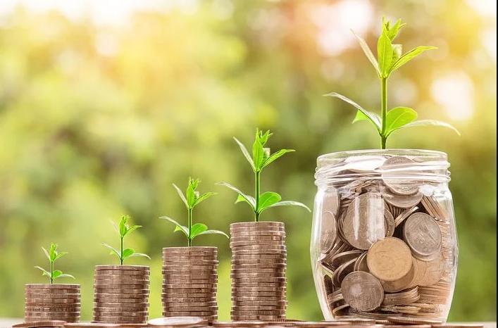 Sådan får du penge til det bæredygtige liv